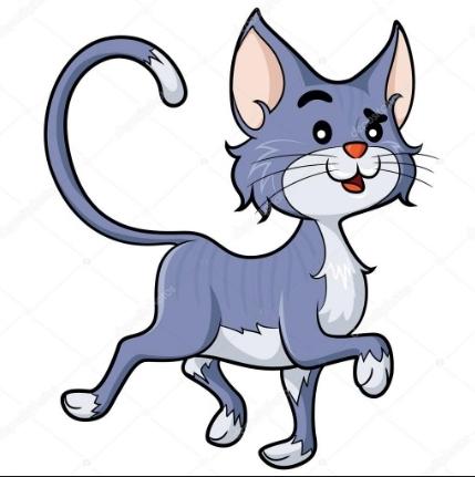 čerstvé kočička obrázky